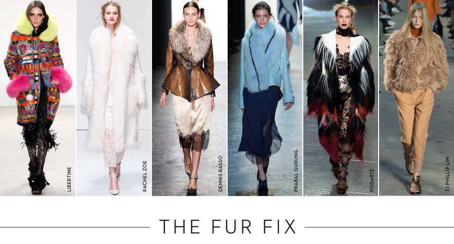 The Fur Fix